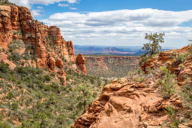 Fuga de montanha Sedona do urso o Arizona imagens de stock royalty free