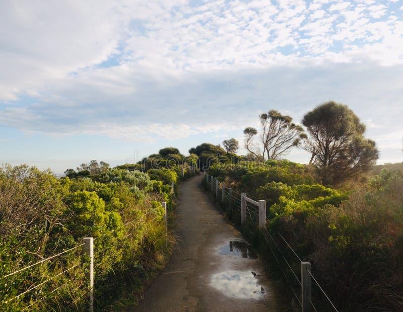 Fuga de passeio cênico, Austrália imagem de stock