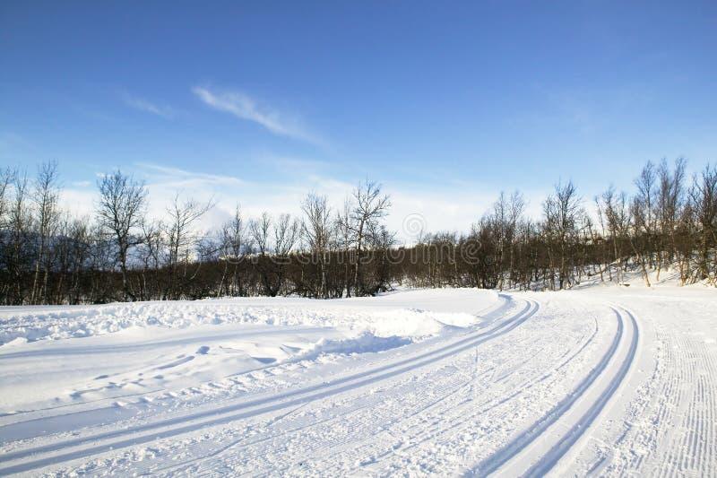 Fuga do esqui do país transversal fotos de stock