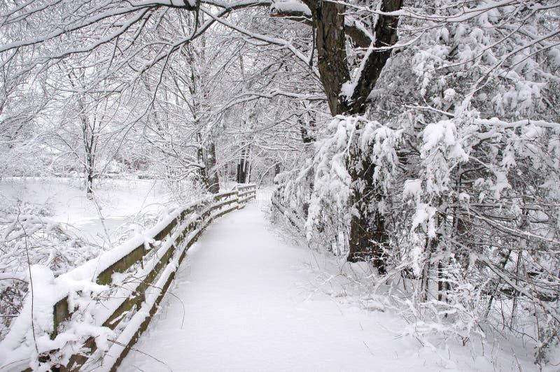 Fuga do inverno fotografia de stock