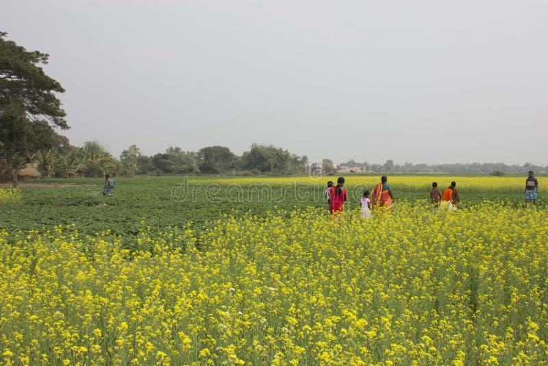 Fuga dos aldeões fotos de stock