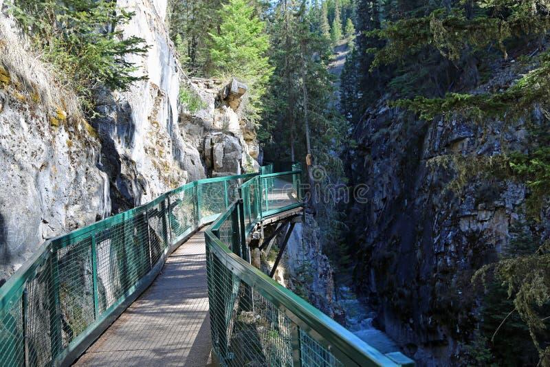 A fuga em Johnston Canyon fotografia de stock