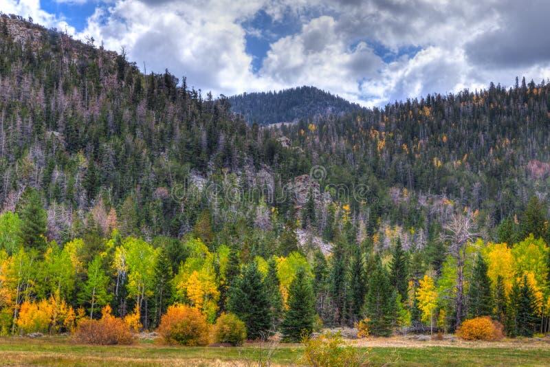 Fuga nacional do pico do Parque-veículo com rodas da Nevada-grande bacia foto de stock