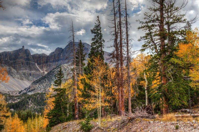 Fuga nacional do pico do Parque-veículo com rodas da Nevada-grande bacia imagem de stock