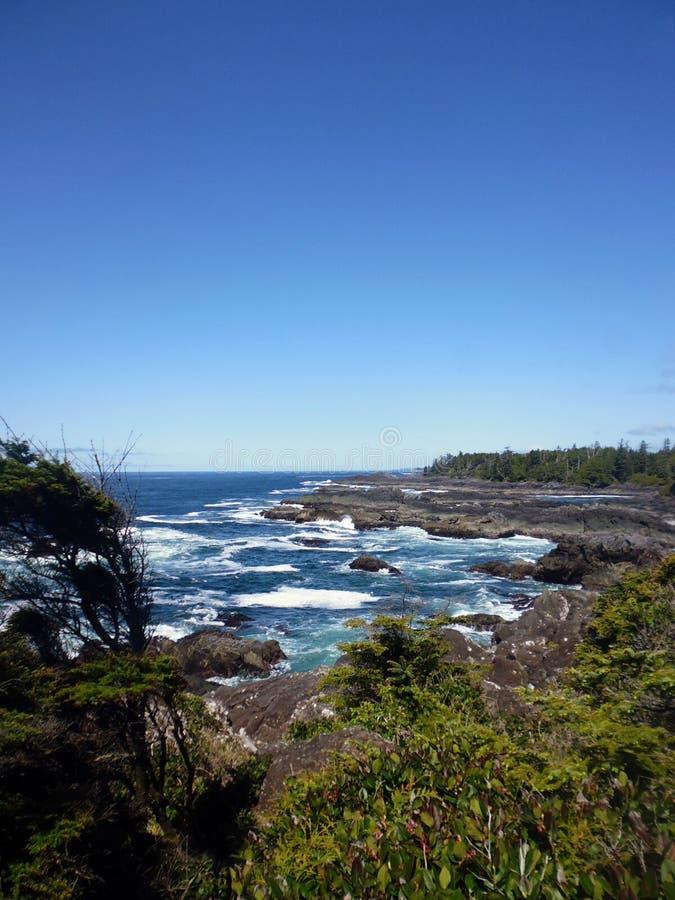 Fuga pacífica selvagem, ilha de Vancôver foto de stock royalty free
