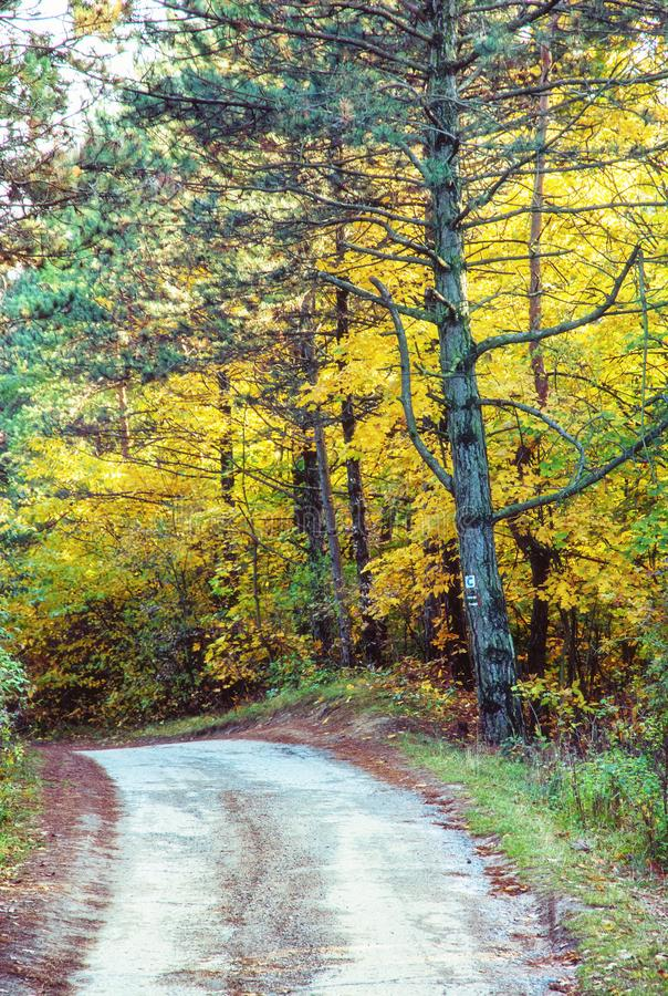 Fuga rural no outono, filtro vívido do turista fotografia de stock