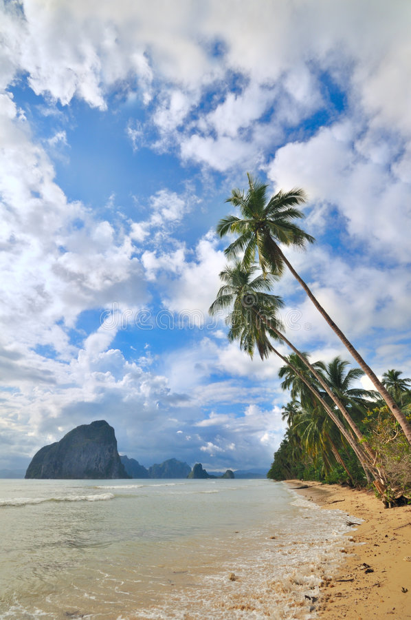 Fuga tropical foto de stock royalty free