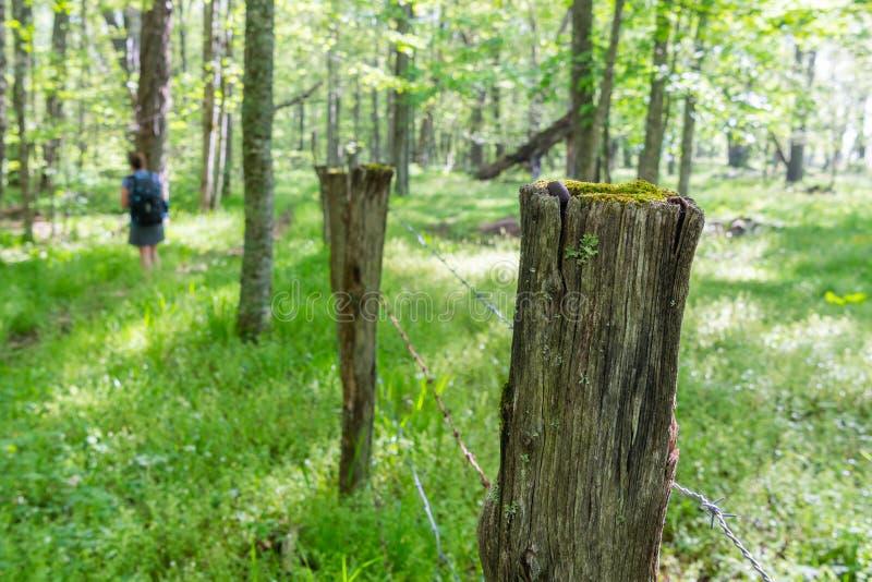 Fuga velha de Post Alongside Hiking da cerca foto de stock