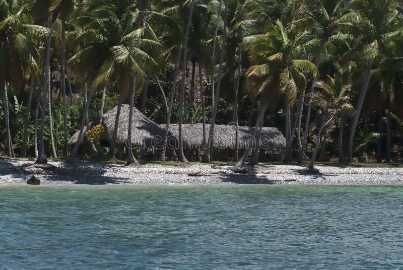 Fuga verde, Samana, Dominica fotografia stock libera da diritti