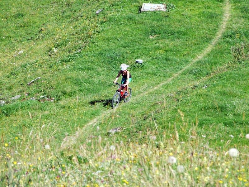 Fugas alpinas pitorescas biking de montanha nas inclinações da cordilheira de Alviergruppe fotografia de stock
