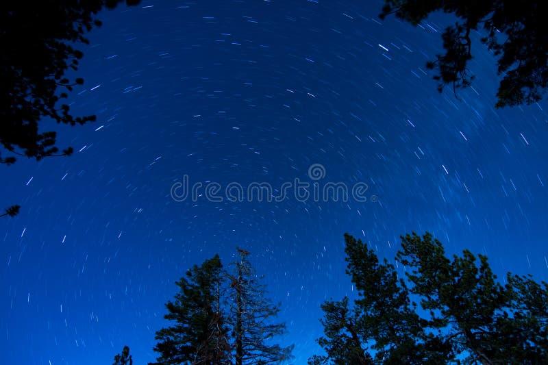 Fugas da estrela com árvores fotos de stock royalty free