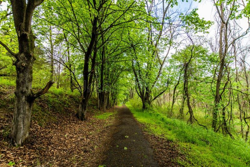 Fugas de caminhada de Marburg do lago no parque estadual de Codorus em Hanover, pena fotografia de stock royalty free