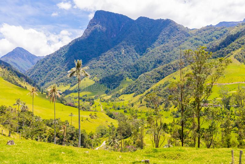 Fugas de caminhada no vale Salento de Cocora foto de stock royalty free