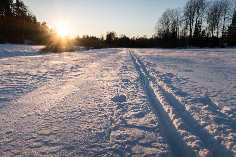 Fugas do esqui da excursão no por do sol fotografia de stock royalty free