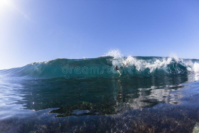 Fughe del surfista di Wave immagine stock