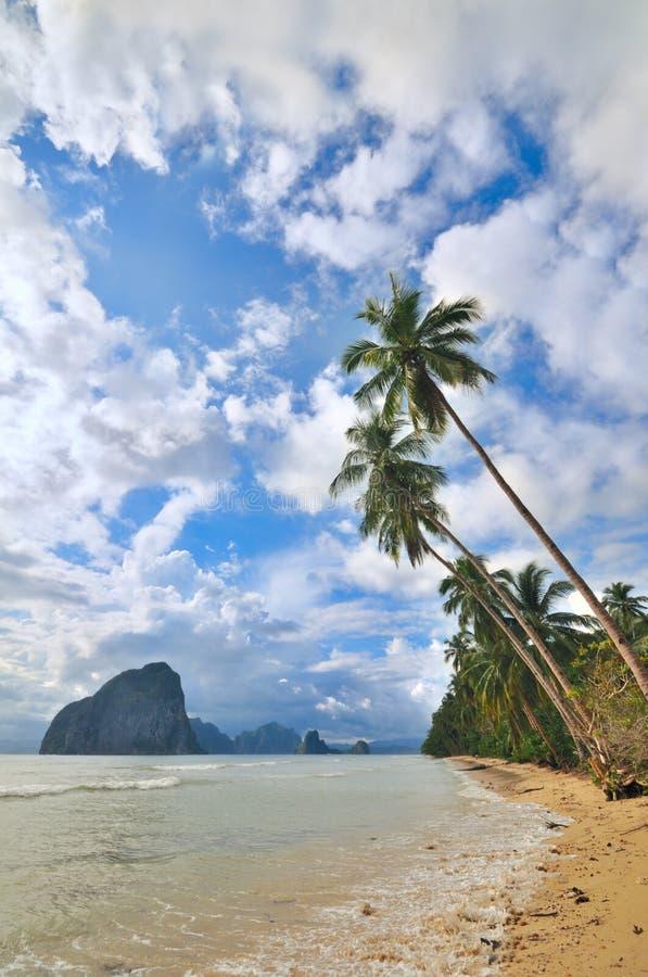 fuite tropicale photo libre de droits