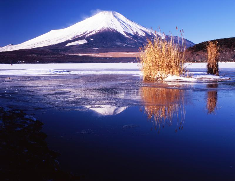 Fuji-168 fotografia stock