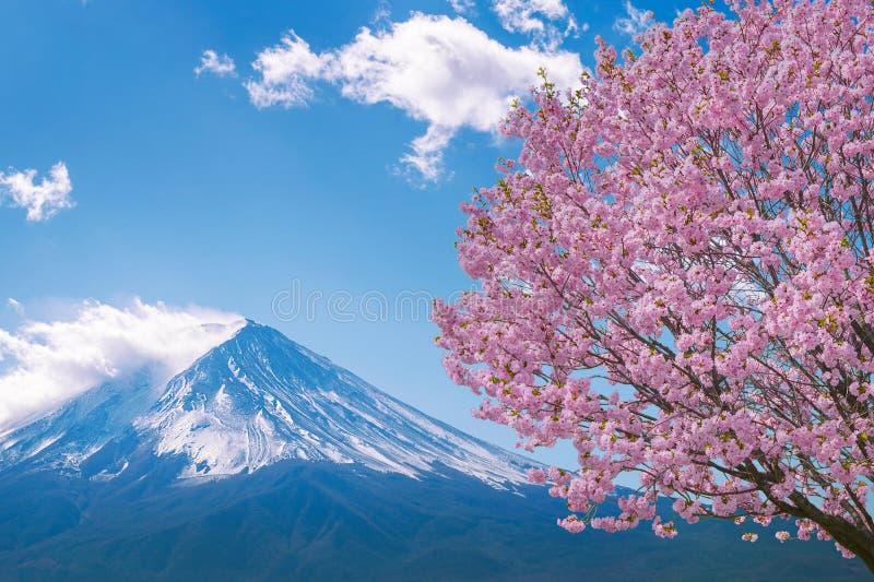 Fuji góra i czereśniowi okwitnięcia w wiośnie, Japonia obrazy royalty free