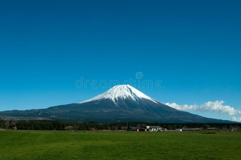 Fuji mount royalty free stock photo
