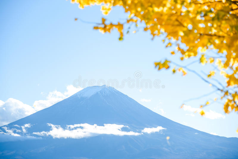 Fuji Mountain in Autumn season royalty free stock image