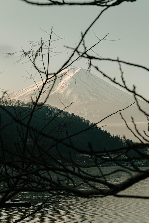 Fuji mountain view and Kawaguchiko lake with tree branch in morning sunrise, winter seasons at yamanachi, Japan. Fuji mountain view and Kawaguchiko lake with stock photo