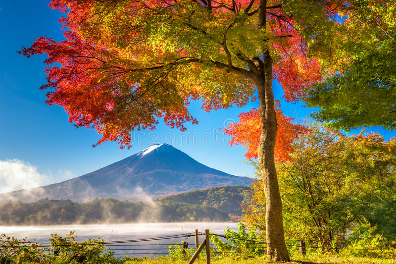 Fuji na queda imagens de stock