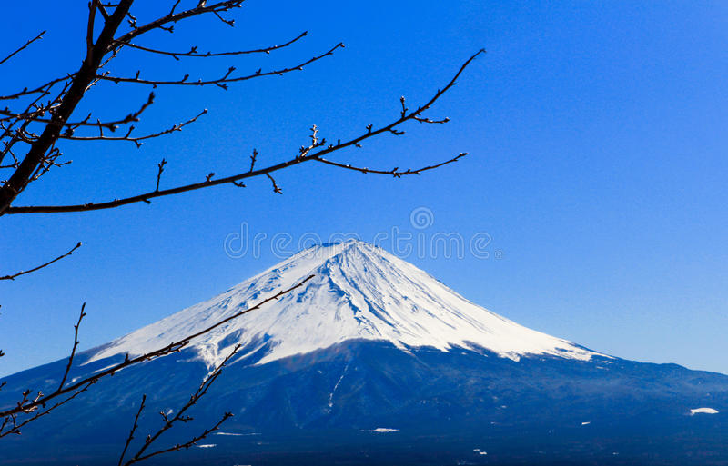 Fuji San in de winter, Japan royalty-vrije stock foto