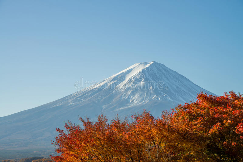 Fujiberg en rood esdoornverlof in de herfstseizoen stock afbeelding