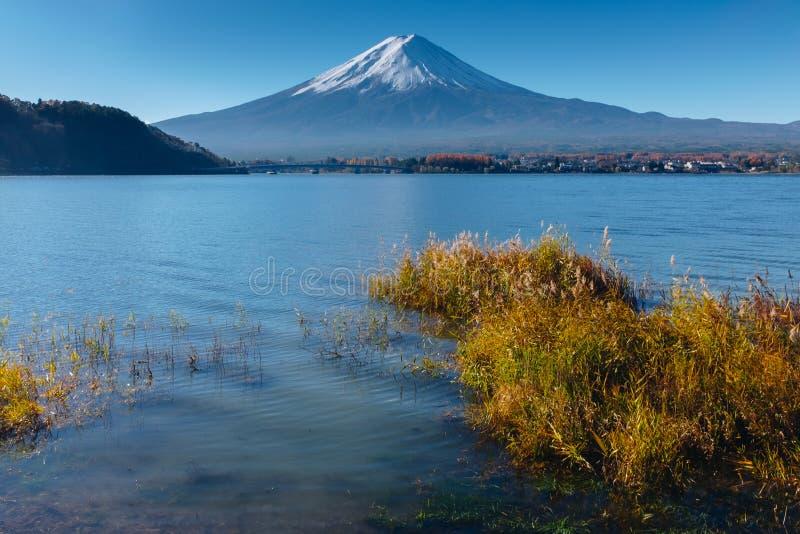 Fujisan, góra Fuji jest wysokim górą w Japonia z jesienią zdjęcie royalty free