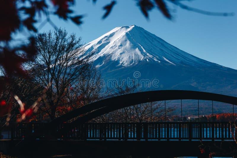 Fujisan, góra Fuji jest wysokim górą w Japonia z jesienią obraz stock