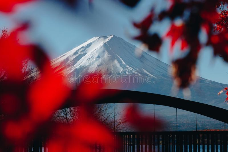Fujisan, góra Fuji jest wysokim górą w Japonia z jesienią obrazy stock
