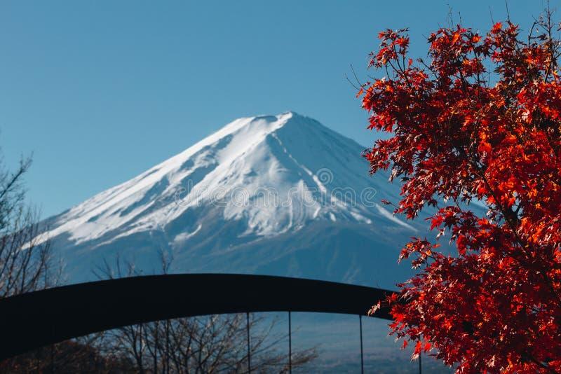 Fujisan, góra Fuji jest wysokim górą w Japonia z jesienią zdjęcia stock