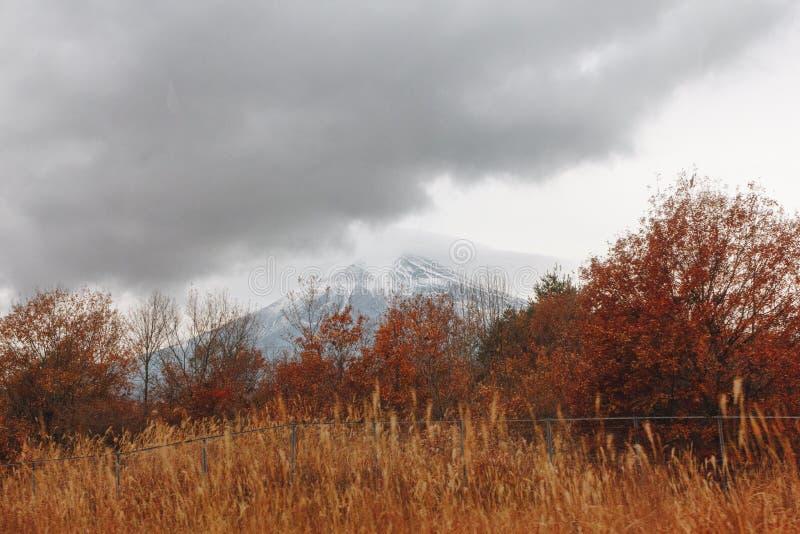 Fujisan, góra Fuji jest wysokim górą w Japonia z jesienią obrazy royalty free