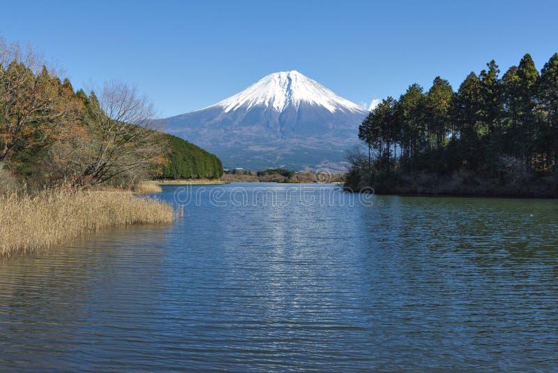 Fujisan at Lake Tanuki. In autumn season stock images