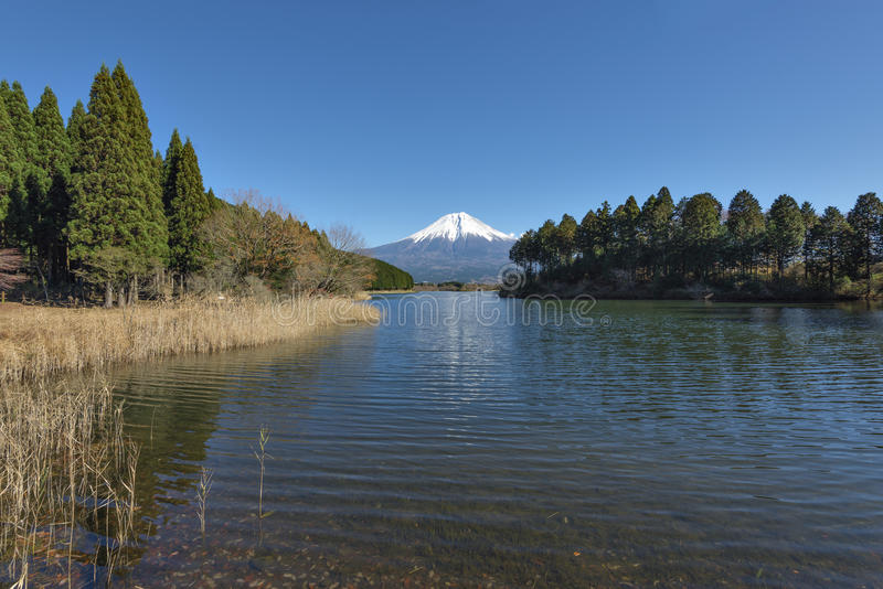 Fujisan at Lake Tanuki. In autumn season royalty free stock photo