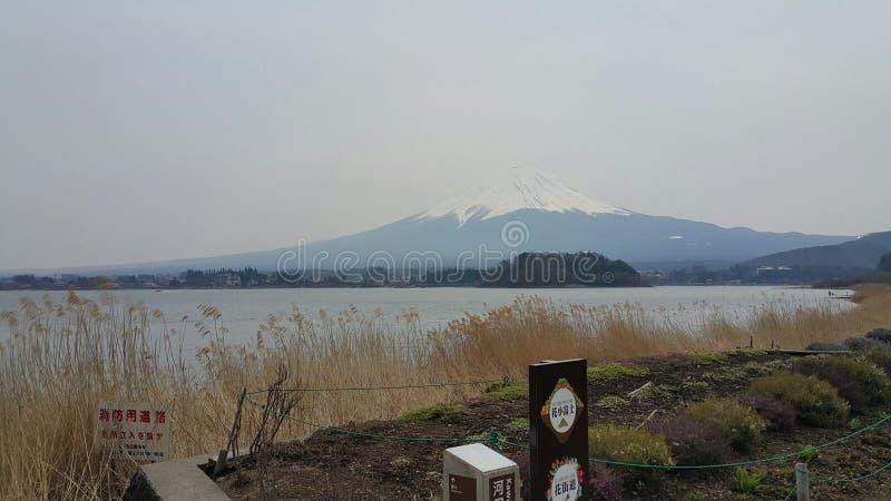 fujiyama 免版税库存图片