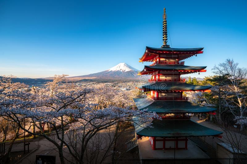 Fujiyoshida, Japan at Chureito Pagoda and Mt. Fuji in the spring with cherry blossoms full bloom during sunrise. Travel and. Vacation concept stock images