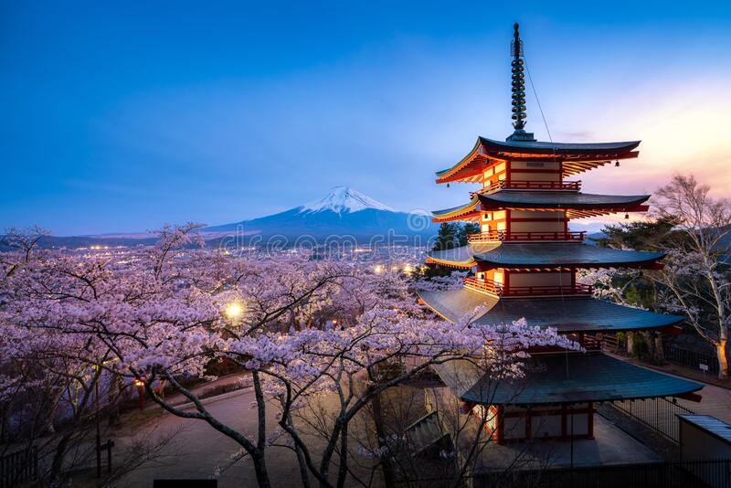Fujiyoshida, Japan at Chureito Pagoda and Mt. Fuji in the spring with cherry blossoms full bloom during twilight. Japan Landscape stock images