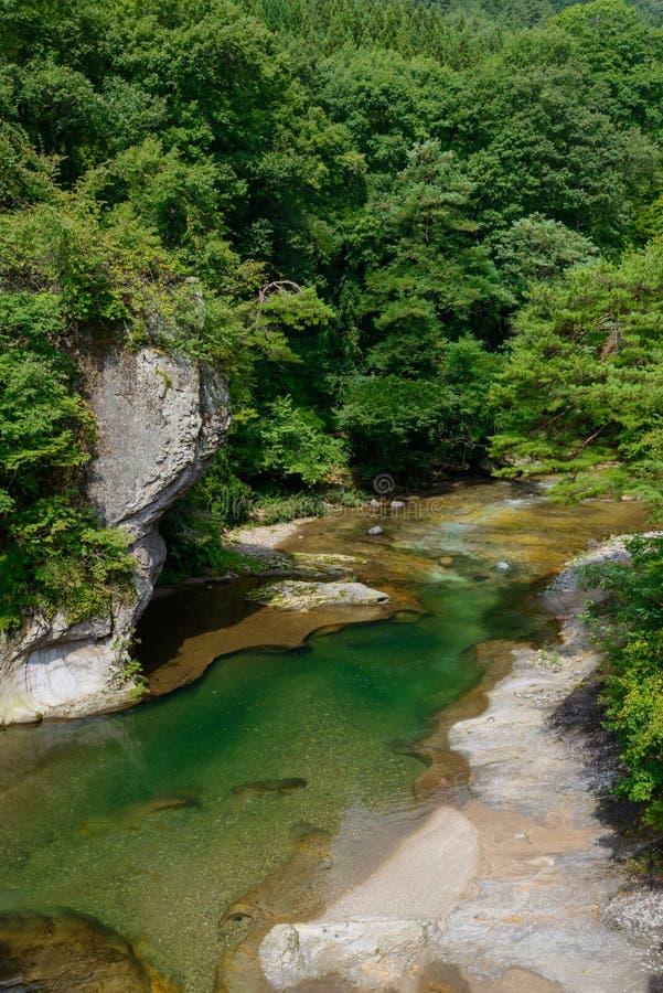 Fukiware понижается в Gunma, Японию стоковые фотографии rf