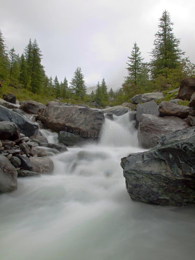 Fukta stenig strömsäng av den alpina bäcken Suddiga vågor av strömmen som kör över stenblock och stenar, nivå för högt vatten eft arkivbild
