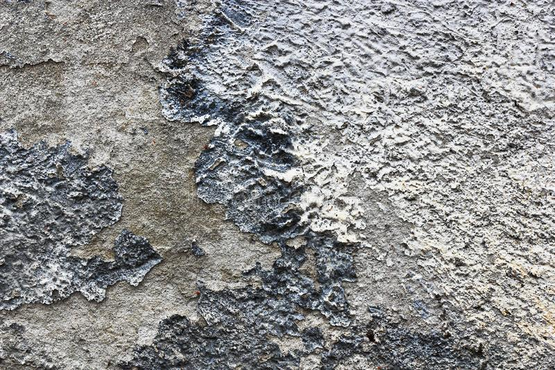 Fuktig vägg, effekter av fuktighet på murbruklagret arkivbilder