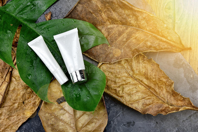 Fuktighetsbevarande hudkrämhudomsorg för torr hud för skada, kosmetiska flaskbehållare arkivfoto