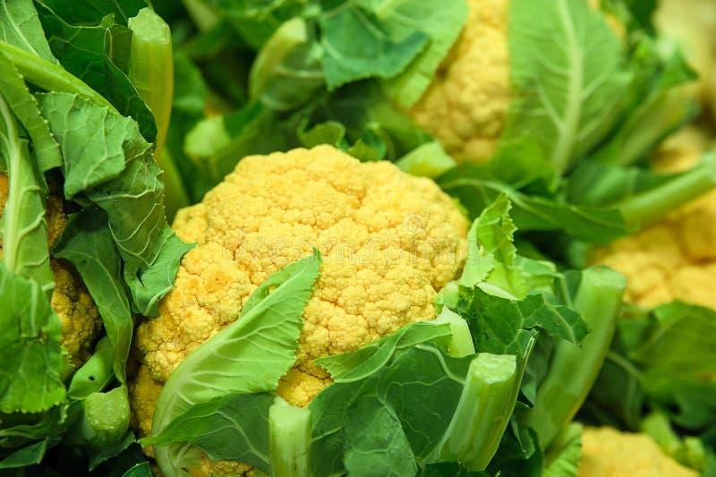 Ful grönsak - guling eller cheddarblomkål royaltyfri foto