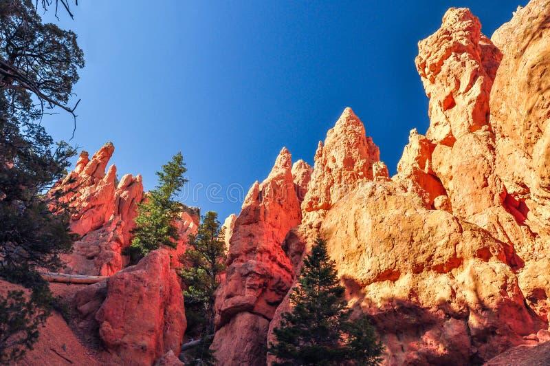 Fulgor da luz solar na garganta vermelha da rocha fotografia de stock royalty free
