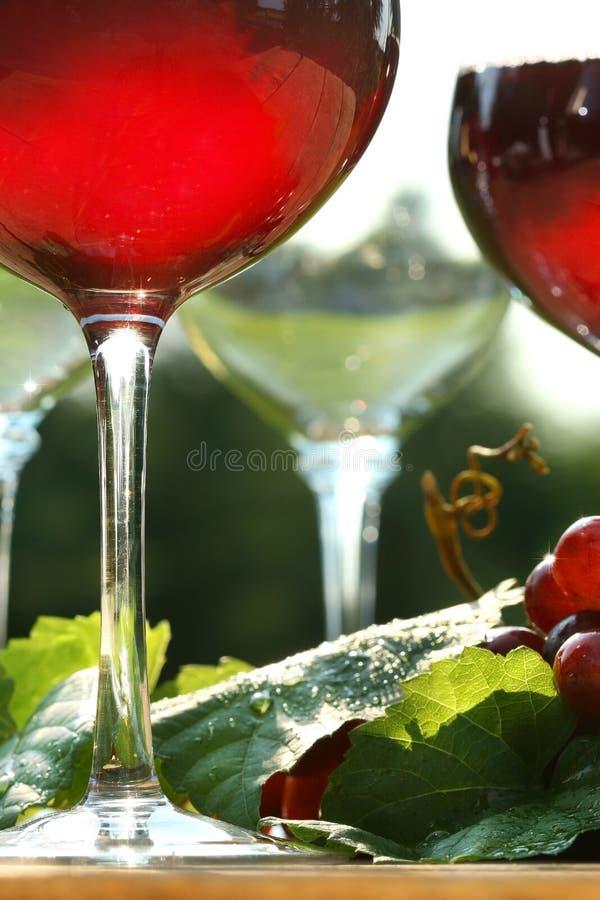 Fulgor do vinho vermelho fotografia de stock