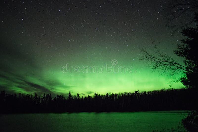 Fulgor verde - Aurora Borealis fotografia de stock
