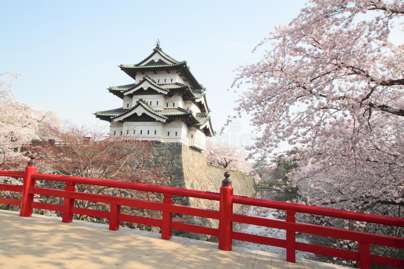 Full bloomed cherry blossoms and japanese castle royalty free stock images
