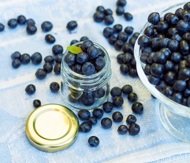 Full burk färska blåbär med grönblad på toppen royaltyfri fotografi