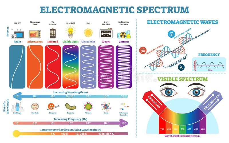 Full Electromagnetic Spectrum Information collection, vector illustration diagram. Physics infographic elements. Full Electromagnetic Spectrum Information vector illustration