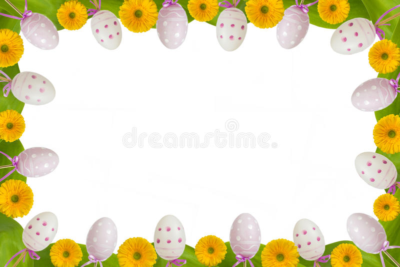 Full frame eggs and gerbera royalty free stock photography